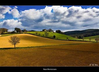 Near Montorsaio by Marcello-Paoli