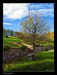 Rural Garden by Marcello-Paoli