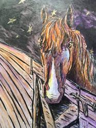 Starry pony by shy-pet
