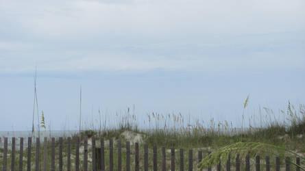 Crescent Beach 8 by DragonladysLair
