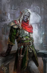 Dark Elf by IcedWingsArt