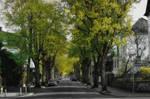 Street by shishas