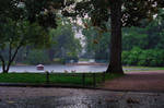 Rain by shishas