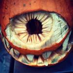 My pumpkin by Avey-Cee