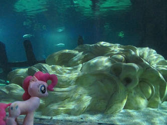 Pink Found Atlantis! by Template93