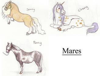 Mares - breeding by gothic180