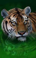 Tiger Ripples by gothic180