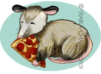 .: One Pizza Possum Please :. by Raika-chan