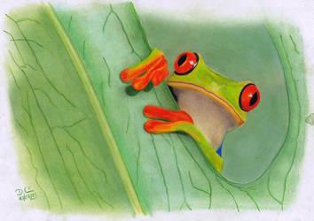 The Frog by daniart-de