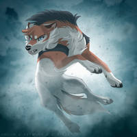 DotW: The Lionwolf by Quaylak