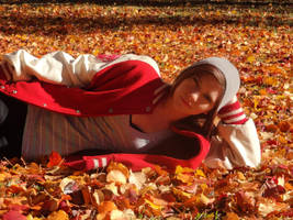 fall pic by KPRITCHETT14