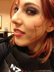 Renegade Shepard Preview - AnimeFest 2013 by Viverra1