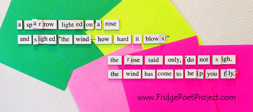 The Daily Magnet #306 by FridgePoetProject