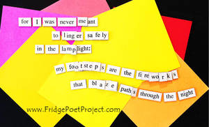 The Daily Magnet #347 by FridgePoetProject