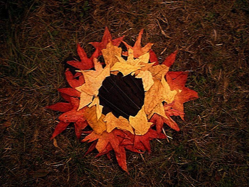 fallen leaves by sudrabs