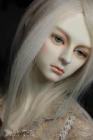 Commission 'Dollshe Bermann' by SDink