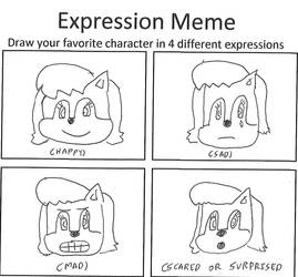 Sally Acorn Expression Meme by dth1971