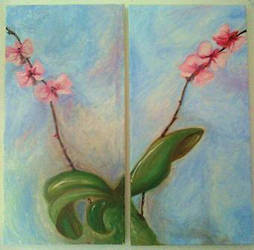 Orchid Diptych by wakethefallen13
