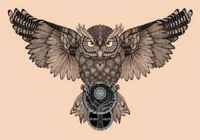 Owl by Romesh-Phoenix