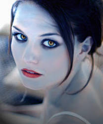 Vampire Heart by lalabennett