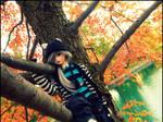 Fawkes up a Tree by Ninja-America