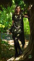 Elf Warrior v 1 by johnnymorrow