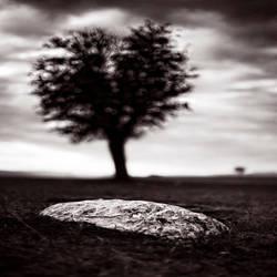 stone heart by EbruSidar