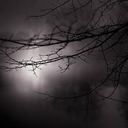 tears of the night by EbruSidar