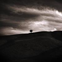 I feel the dark by EbruSidar