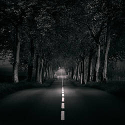 Walking on a dream by EbruSidar