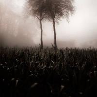 Parallel souls by EbruSidar
