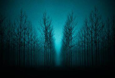 Night Spirits by EbruSidar