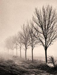 Endless by EbruSidar