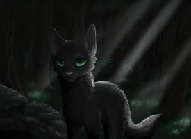 Hollyleaf by karzixkar