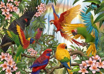 Parrots by jasonjuta