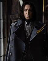 Snape Undercover by dixiekasilke