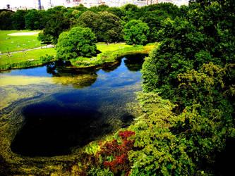 park by arleneruth
