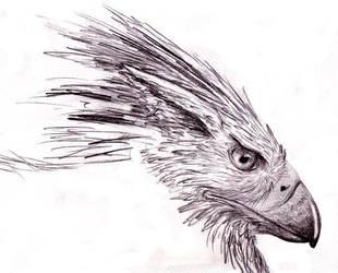Sketchbook head view by Ryaskgoldengryph