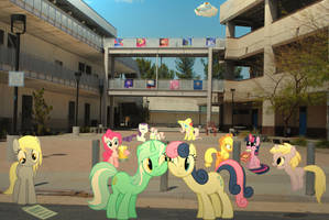 Ponies in College by UtterlyLudicrous