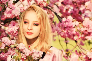 Cherry blossom by ideea