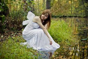 Swan lake by ideea