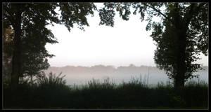 Foggy August by Siobhan68