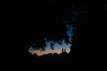 4am by Apexiso