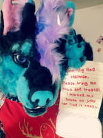 Fursuit for sale by Anileu