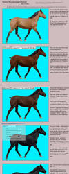 Tutorial - From Bay to Black by JenHuang