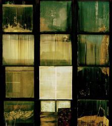 the windows II by Elwig