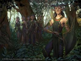 Dwynen's Elite by LASAHIDO