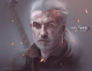 The Witcher by LASAHIDO
