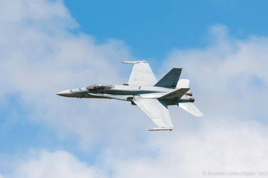 FA-18 Hornet II by anjules