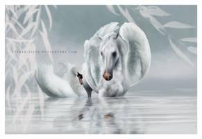 The Swan Lake by JulieBales